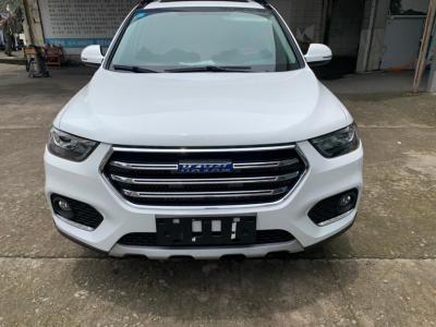 2019年3月 哈弗 H6 蓝标 运动版 1.5T 自动两驱尊贵型图片