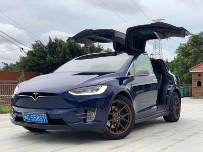 2019年5月 特斯拉 Model S Model S 100D图片