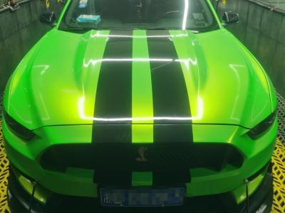 2016年6月 福特 Mustang  2.3T 性能版图片