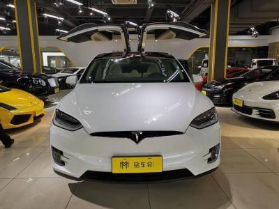 2018年4月 特斯拉 Model X Model X 100D 长续航版图片