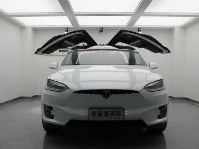 2016年8月   特斯拉 Model X MODEL X 90D图片