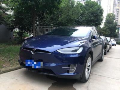 特斯拉 Model X  2016款 Model X 60D图片