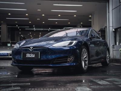 2018年6月 特斯拉 Model S Model S 75D图片