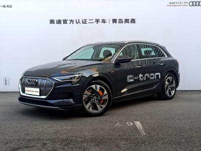 2020年8月 奥迪 奥迪e-tron(进口) 55 quattro 时尚型图片