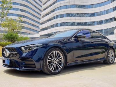 奔驰 奔驰CLS级  2020款 CLS 300 豪华型图片