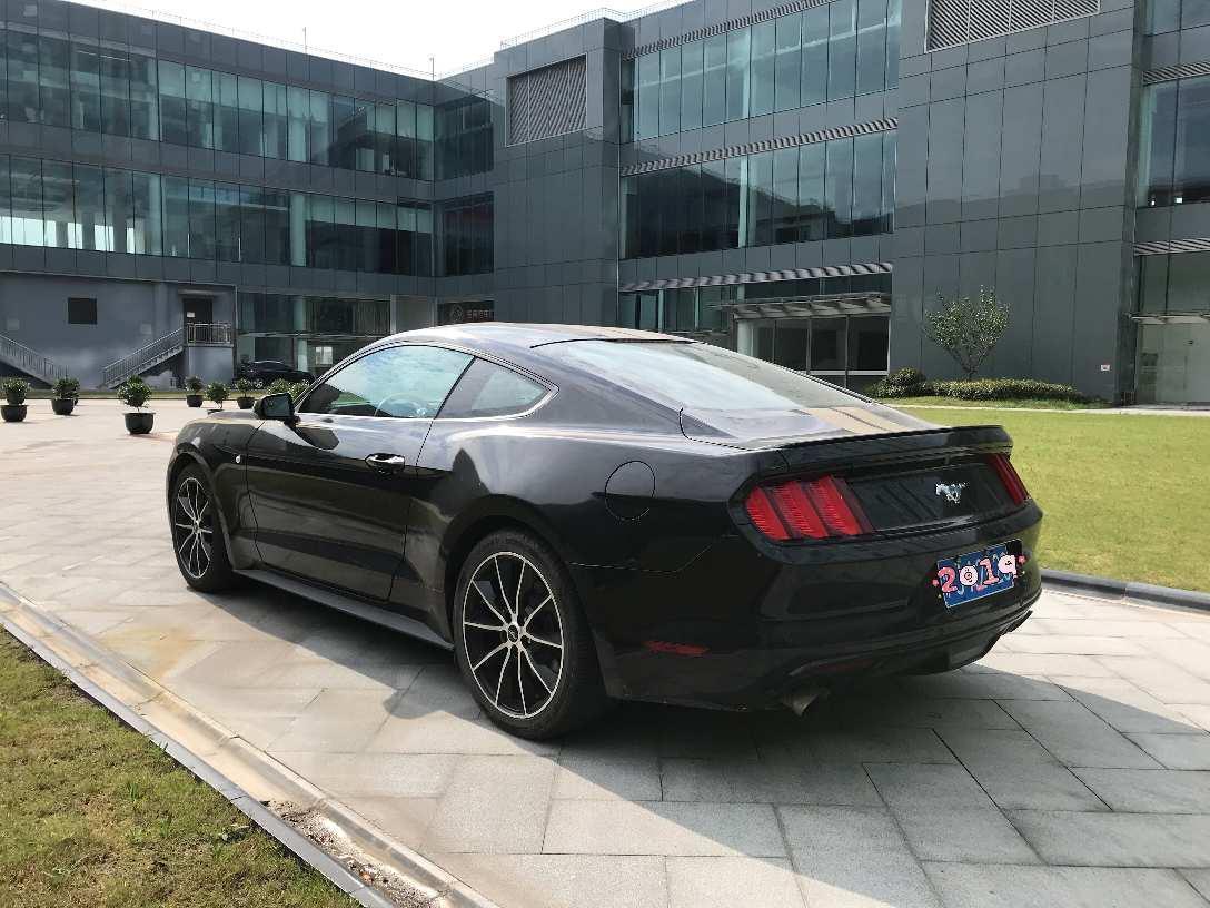 福特 Mustang  2015款 2.3T 性能版图片
