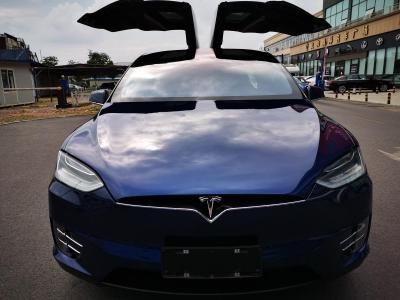 2017年11月 特斯拉 Model X Model X 75D图片