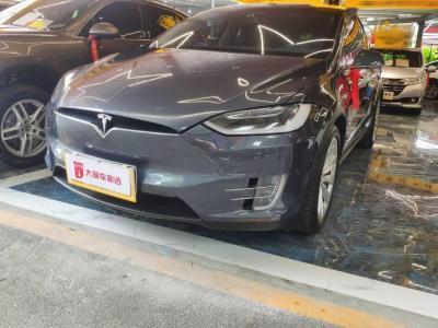 2017年3月 特斯拉 Model X Model X 90D图片