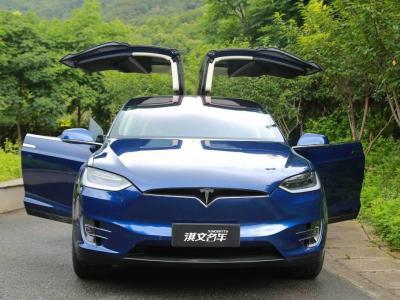 2017年9月 特斯拉 Model X Model X 100D 长续航版图片