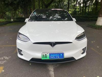 2017年6月 特斯拉 Model X Model X 100D 长续航版图片