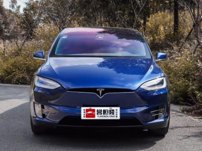 2018年7月 特斯拉 Model X 2017款 Model X 75D图片