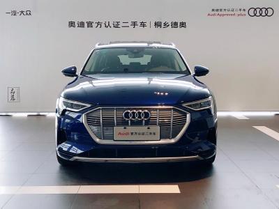 2020年7月 奥迪 奥迪e-tron  55 quattro 时尚型图片