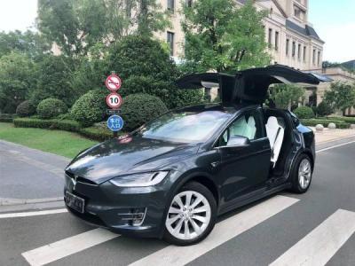 2017年8月 特斯拉 Model X 100D图片