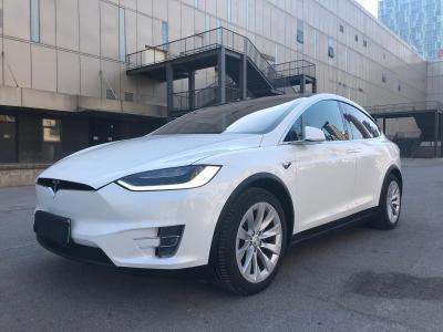 2018年5月 特斯拉 Model X 100D图片