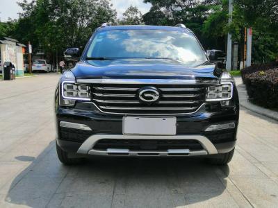 广汽传祺 GS8  2019款  390T 两驱豪华智联版(七座)