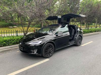 2019年6月 特斯拉 Model X 长续航版图片