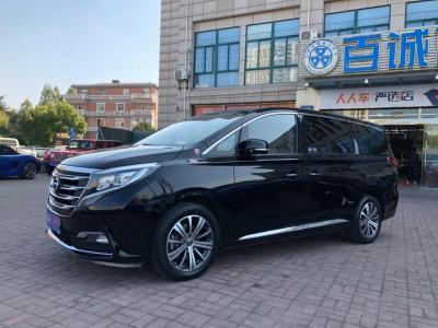 2019年6月 广汽传祺 GM8 320T 尊贵版图片