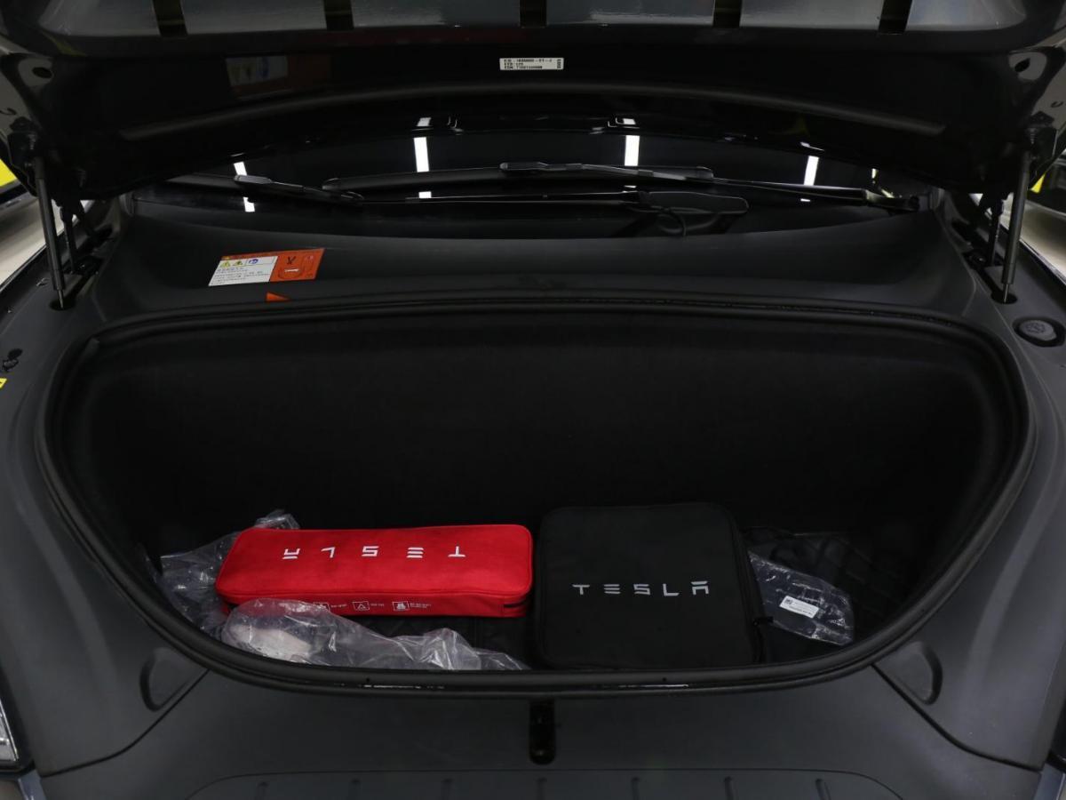 特斯拉 Model X  2017款 100D图片