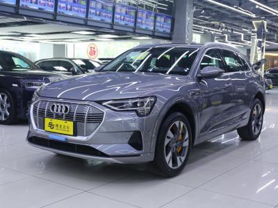 奥迪 奥迪e-tron  2019款 55 quattro 时尚型