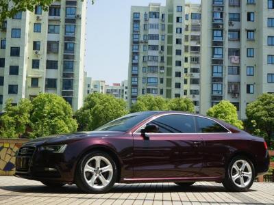 2015年4月 奥迪 奥迪A5(进口) Coupe 45 TFSI quattro图片