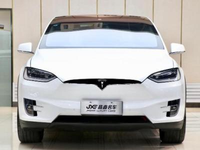 2017年9月 特斯拉 Model X 100D图片