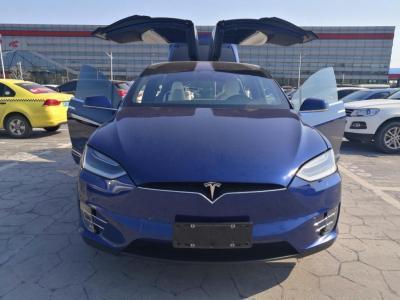 2018年5月 特斯拉 Model X Model X 100D 长续航版图片