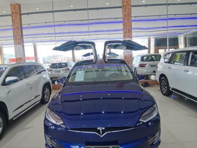 2018年7月 特斯拉 Model S Model S 100D图片