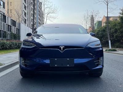 2019年7月 特斯拉 Model X Model X 100D 长续航版图片