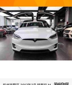 2017年2月 特斯拉 Model X 90D图片
