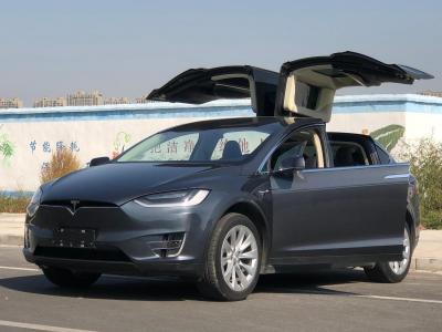 2017年8月 特斯拉 Model X 90D图片