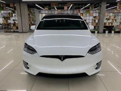 2019年1月 特斯拉 Model X 长续航版图片