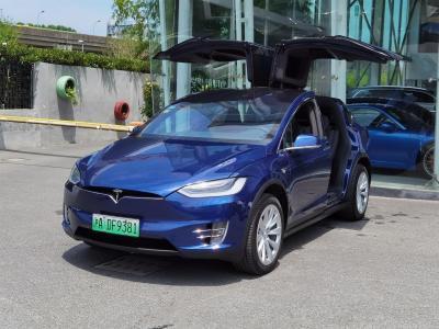 2019年7月 特斯拉 Model S Model S 100D图片