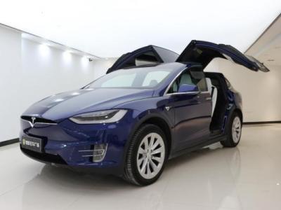 2018年6月 特斯拉 Model X 100D图片