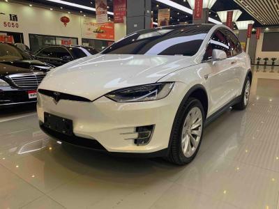 2019年4月 特斯拉 Model X Model X 100D 长续航版图片