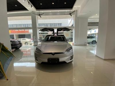 2017年9月 特斯拉 Model X  Model X 75D圖片