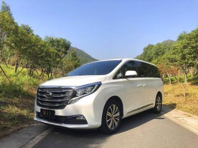 2019年5月 廣汽傳祺 GM8 320T 旗艦版圖片