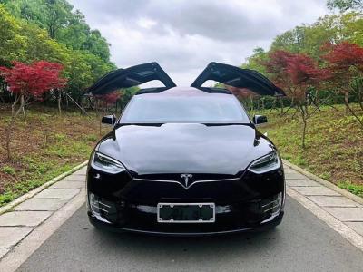 2018年5月 特斯拉 Model X  Model X 75D图片