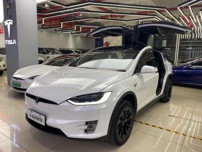2018年1月 特斯拉 Model X Model X 100D 长续航版图片