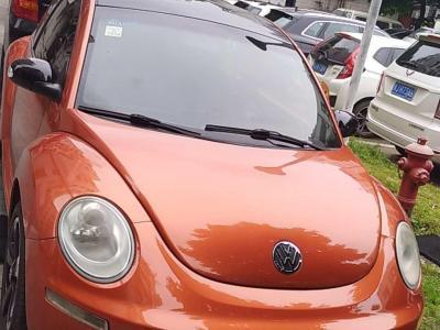 2011年2月 大众 甲壳虫(进口) 2.0 BlackOrange舒适版图片