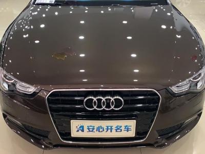 2014年4月 奥迪 奥迪A5(进口) Cabriolet 45 TFSI图片