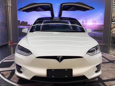 2020年7月 特斯拉 Model X Model X 100D 长续航版图片