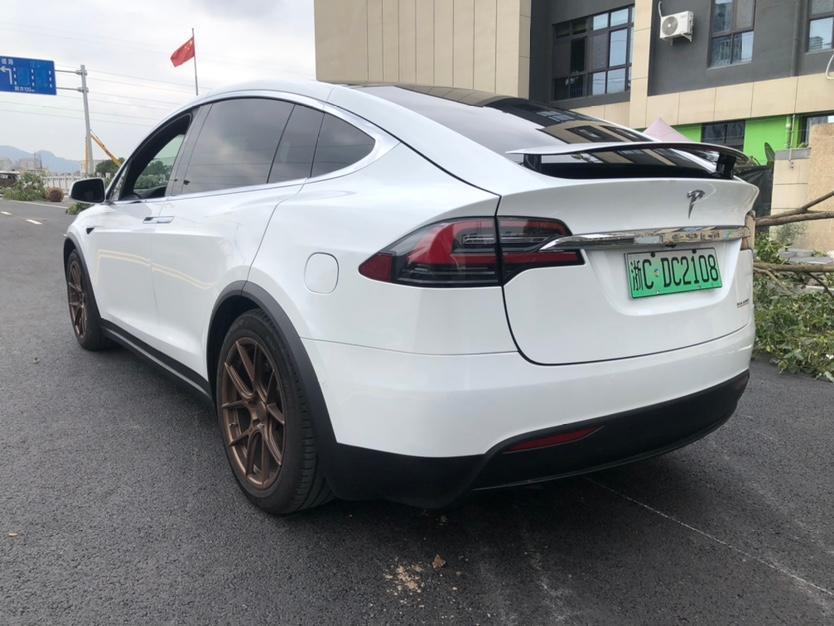 特斯拉 Model X  2019款 Performance 高性能版图片