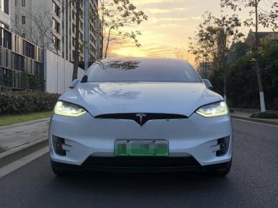 2019年4月 特斯拉 Model X Model X 75D图片