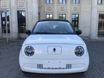 欧拉 R1  2019款 310km 灵趣版