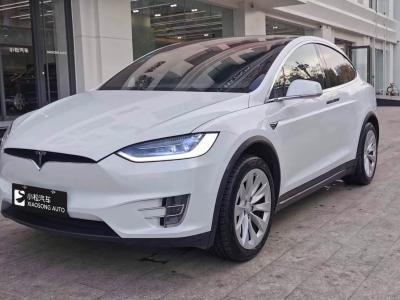 2017年7月 特斯拉 Model X Model X 75D图片