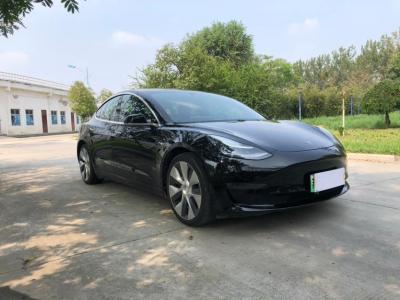 2019年6月 特斯拉 Model 3 Performance高性能全轮驱动版图片