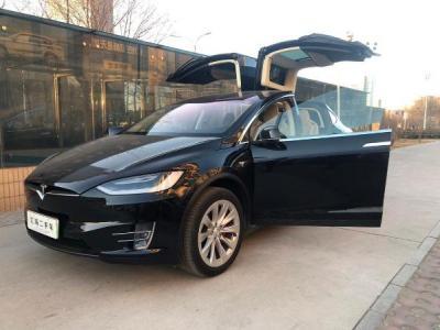 2017年1月 特斯拉 Model X P100D图片