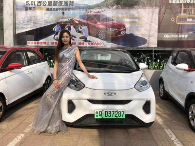 2018年12月 奇瑞 eQ eQ1 小蚂蚁400智尚版纯电动轿车图片
