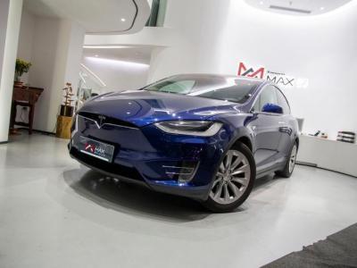 2015年7月 特斯拉 Model X Model X 90D图片