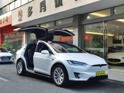 2020年1月 特斯拉 Model X 长续航版图片
